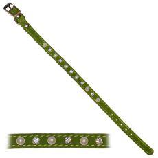 Obojek pro psa s ozdobami, zelený - 1 x 22-26 cm