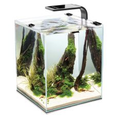 AQUAEL LED Shrimp Set Smart 10 - 20 x 20 x 25 cm