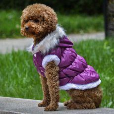 Bunda pro psa s odepínatelnou kapucí - fialová, S