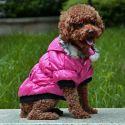 Bunda pro psa s černým lemováním- růžová, XL