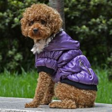 Bunda pro psa s černým lemováním - fialová, L