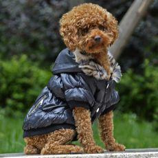 Bunda pro psa s černým lemováním - černá, L