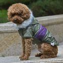 Bunda pro psa s nášivkou - zelená, XXL