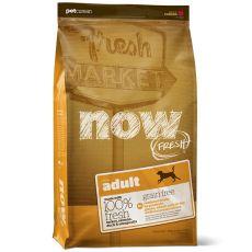 Petcurean NOW FRESH Grain Free ADULT - 11,33 kg