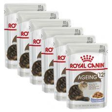 Royal Canin AGEING + 12 - kapsička 6 x 85g