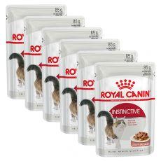 Royal Canin INSTINCTIVE 6 x 85 g - kapsička