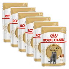 Royal Canin British Shorthair - kapsička, 6 x 85g