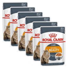 Royal Canin Intense BEAUTY in Jelly 6 x 85 g - želé v kapsičce
