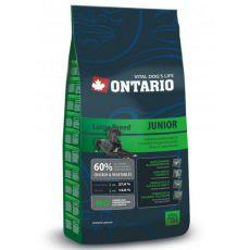 Ontario Junior Large - 2,5 kg