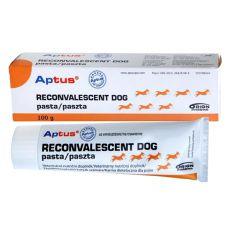 Pasta APTUS – RECONVALESCENT DOG 100 g