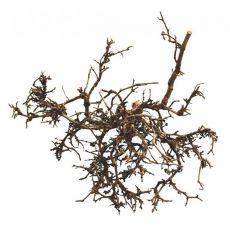 Dekorace do terária - přírodní pouštní keř 15 - 20 cm