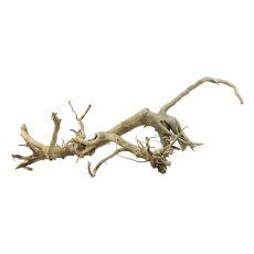 Kořen do akvária Old Twity Wood – 50 x 20 x 18 cm