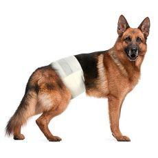 Pleny pro psy L - XL, 12 ks