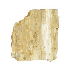 Kámen do akvária Petrified Stone M 8 x 7 x 9 cm