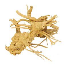 Kořen do akvária Cuckoo Root - 20 x 15 x 18 cm