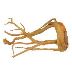Kořen do akvária Cuckoo Root - 61 x 33 x 29 cm