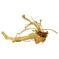 Kořen do akvária Cuckoo Root - 71 x 28 x 30 cm