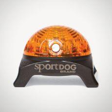 Světlo na obojek SportDog Beacon, žluté
