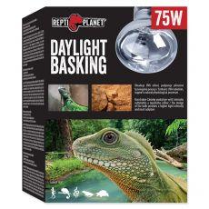 Žárovka REPTI PLANET Daylight Basking Spot 75 W