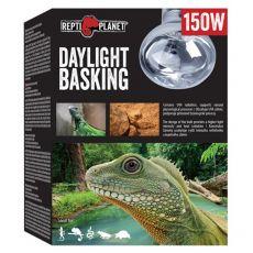 Žárovka REPTI PLANET Daylight Basking Spot 150 W