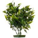 Rostlina do akvária -  plastová, 28 cm srdčité listy
