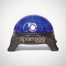 Světlo na obojek SportDog Beacon, modré