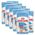 Kapsička Royal Canin Medium Puppy 10 x 140 g