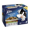 Kapsičky Felix Fantastic Duo, lahodný výběr se zeleninou v želé 12 x 100 g