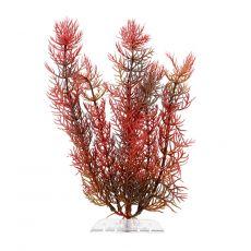 Plastová rostlina Tetra Red Foxtail, S 15 cm