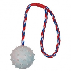 Hračka pro pejsky na šňůrce -  6cm míček