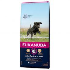 Eukanuba Developing Junior Large Breed 12 kg