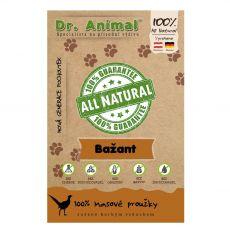 Dr.Animal 100 % bažantí masové proužky 80 g
