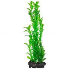 TETRA Rostlina Hygrophila L 30 cm