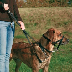 Postroj pro psy tréninkový - XS, 15 cm
