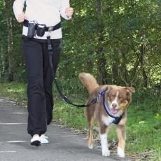 Bederní pás s kapsičkami a vodítkem na psa do 40 kg