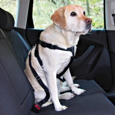 Postroj pro psa do auta, bezpečnostní - S, 30 - 60 cm