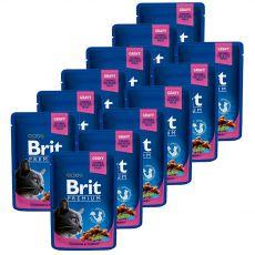 Kapsička BRIT Premium Cat Chicken & Turkey 12 x 100 g