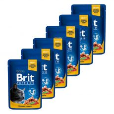 Kapsička BRIT Premium Cat Salmon & Trout 6 x 100 g