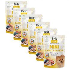 Brit Care MINI Rabbit & Salmon 6 x 85 g