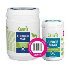 Canvit Chondro Maxi 500 g + Canvit Junior Maxi 230 g GRATIS