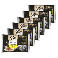 Sheba Delicacy Drůbeží výběr kapsiček 6 x (4 x 85 g)