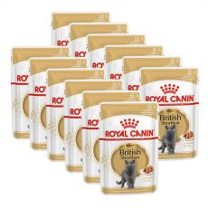 Royal Canin British Shorthair - kapsička, 12 x 85 g