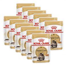 Royal Canin Maine Coon - kapsička, 12 x 85 g