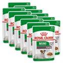 Royal Canin Mini Ageing kapsička pro staré malé psy 12 x 85 g