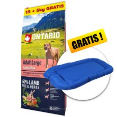 ONTARIO Adult Large - lamb & rice 15+5kg ZDARMA + DÁREK