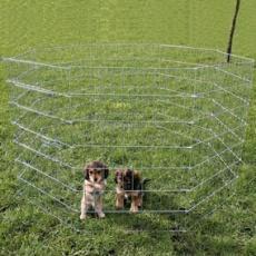 Voliera pro štěňata a malé psy