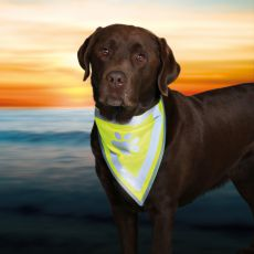 Reflexní šátek pro psa s potiskem - velikost XS-S