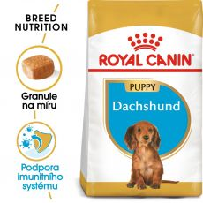 ROYAL CANIN JUNIOR JEZEVČÍK 1,5 kg