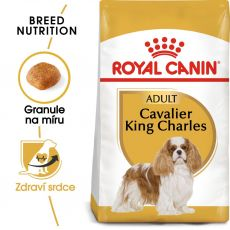 ROYAL CANIN CAVALIER KING CHARLES ADULT 1,5 kg